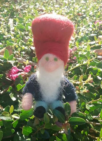 bush gnome