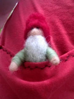 pocket gnome