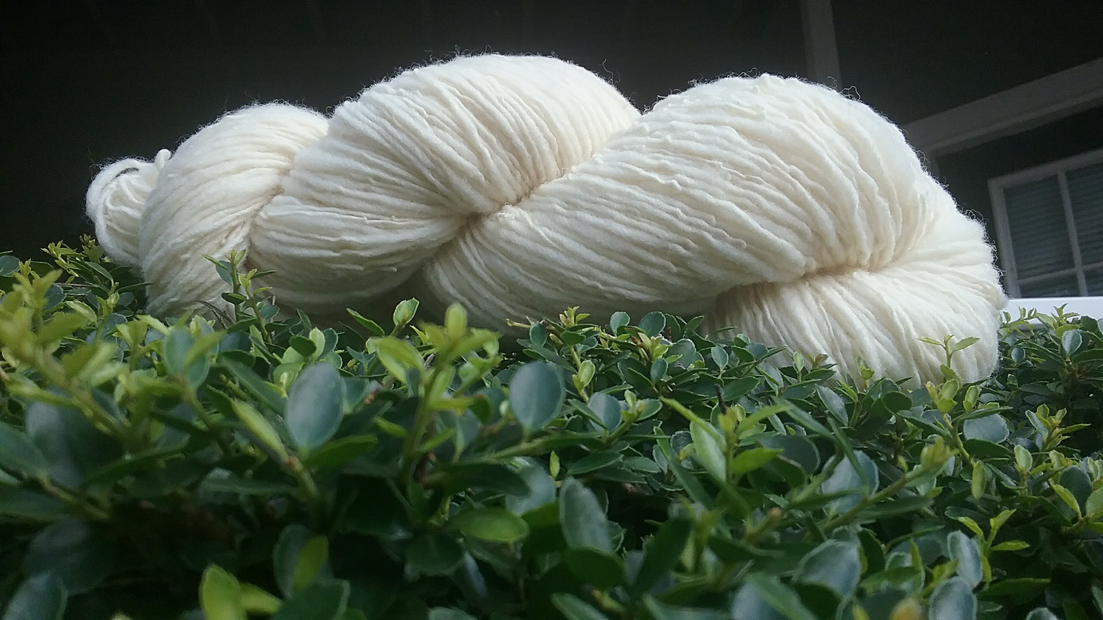 thick and thin singles yarn - Southdown wool
